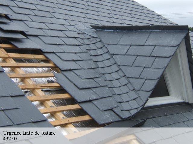 Entreprise réparation fuite de toiture à Sainte Florine tel: 04.82.29.30.93