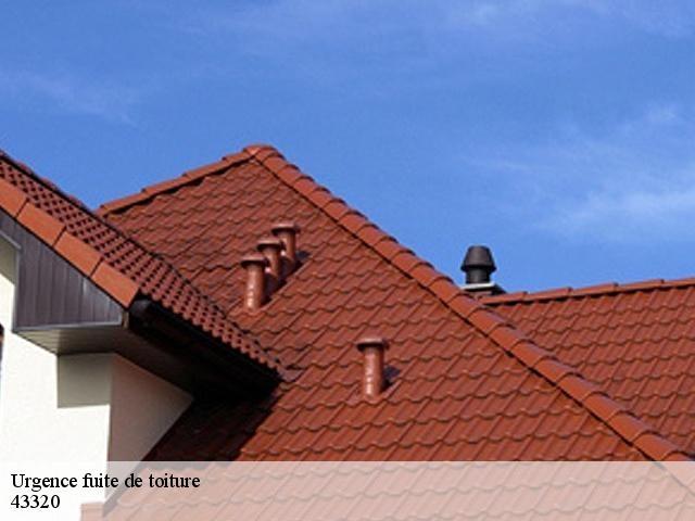 Entreprise réparation fuite de toiture à Saint Vidal tel: 04.82.29.30.93